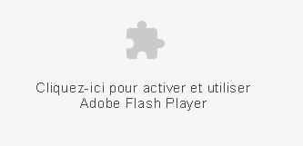 Installer Flash Player